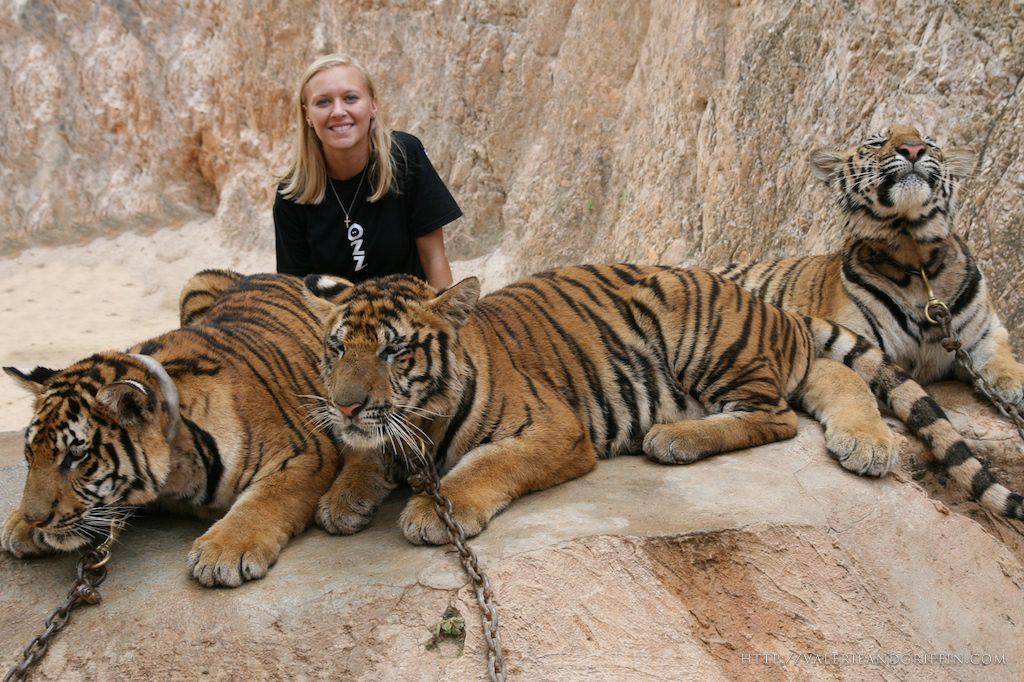 Valerie-and-Griffin-at-Tiger-Temple-1